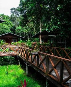 Grounds of Borneo Nature Lodge, where to stay in Borneo for eco-tourism and wildlife spotting!