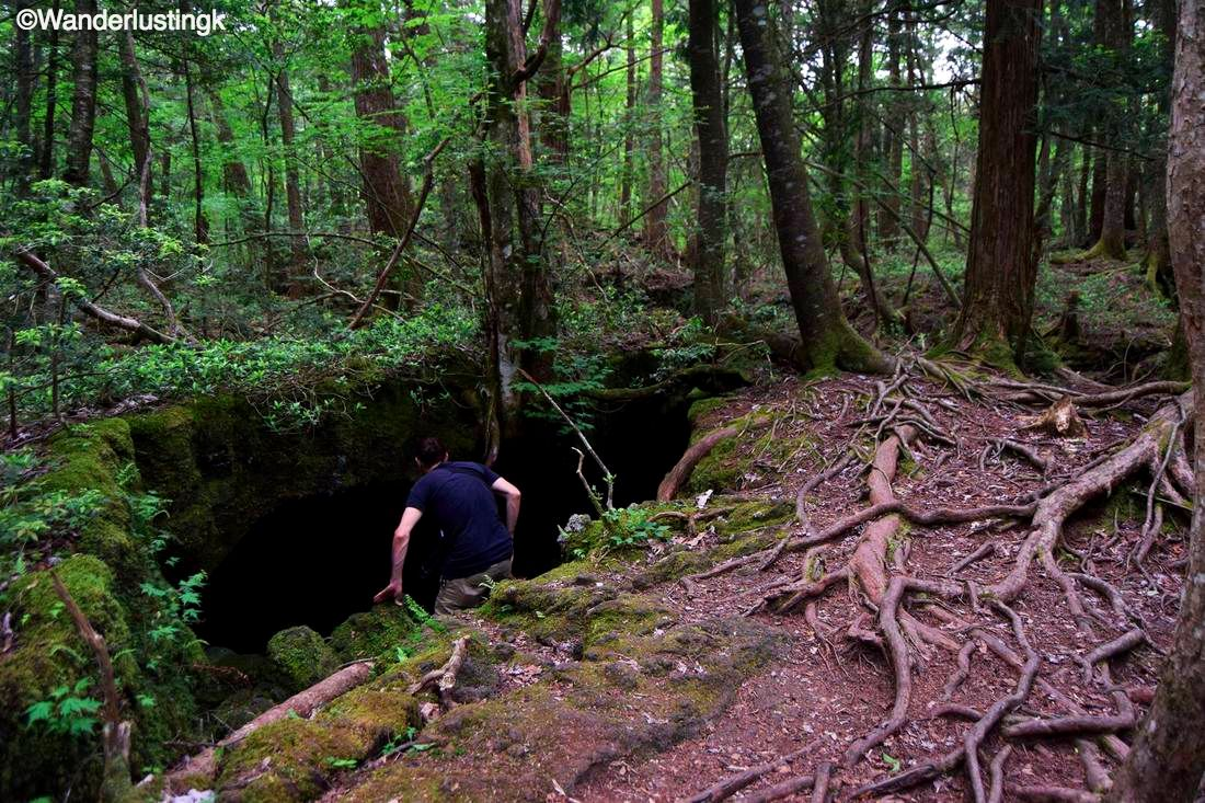 Photo of a cave in the Aokigahara forest, known as the sea of trees in Japan.